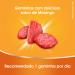 Redoxitos Vitamina C Sabor Morango com 25 Unidades | Drogasil.com Foto 6