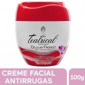 Creme Facial Teatrical Antirrugas