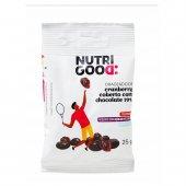 Drageado Nutrigood de Cranberry Coberto com Chocolate com 25g