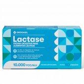 Lactase Enzima Digestiva Drogasil 10.000FCC com 10 Cápsulas