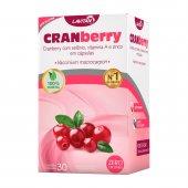 Lavitan Cranberry