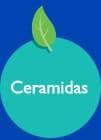 Ceramidas