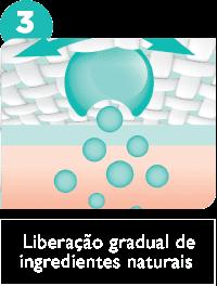 Liberação gradual de                             ingredientes naturais